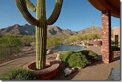 1347 E Desert Garden Drive, Tucson, AZ 85718_4