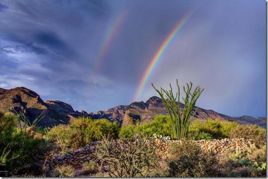 7575 N Sendero De Juana Tucson, AZ 85718 _x